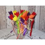 jarní tulipán-výběr barev